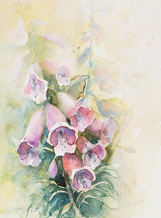 Lydia Leydolf WATERCOLOR