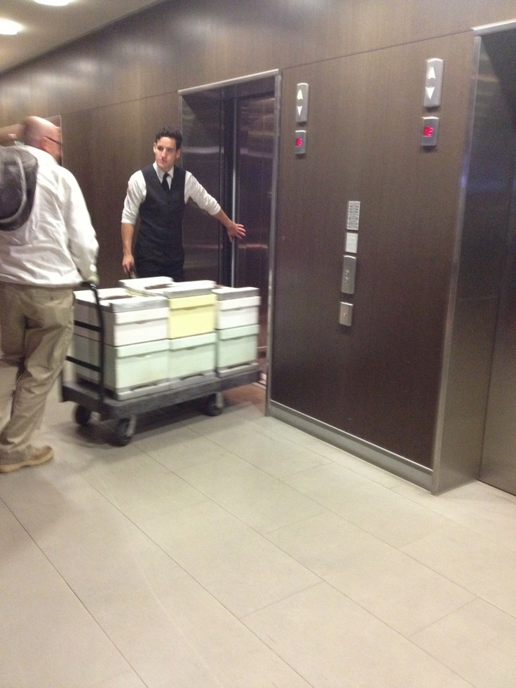 5 star treatment for Canberra Urban Honey as the concierge holds the lift in the Hotel Realm  #rooftop #beekeeeping #urban #agriculture