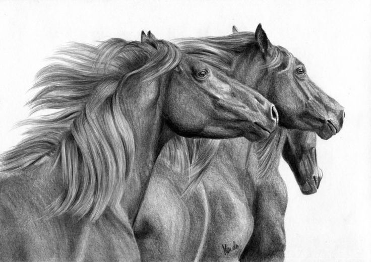 Rysunek trojki koni