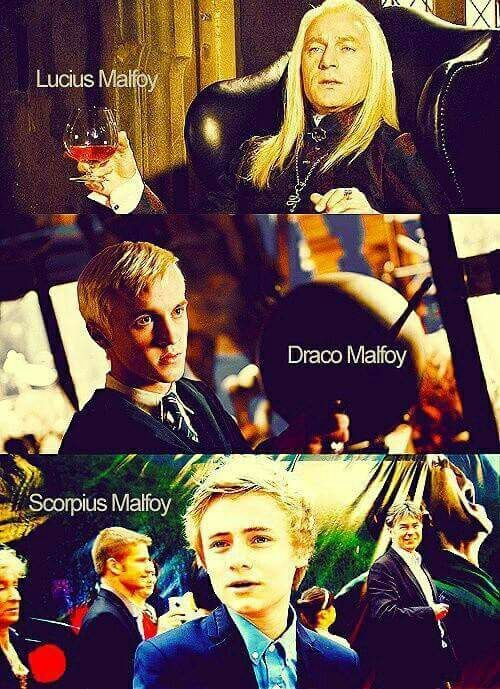 Immagine di harry potter, draco malfoy, and malfoy