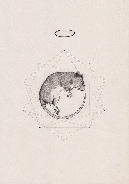 Tattoo Inspiration - (Geometric) Rat Prism. Specifically, the prism and halo. A Peter Carrington illustration. #Art