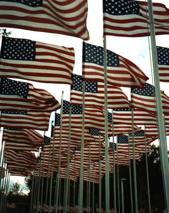 American flags for sale, only American Flags, Nylon and 2 Ply Polyester. We have an easy and secure checkout on the net. #eastflakeFlag $Americanflag