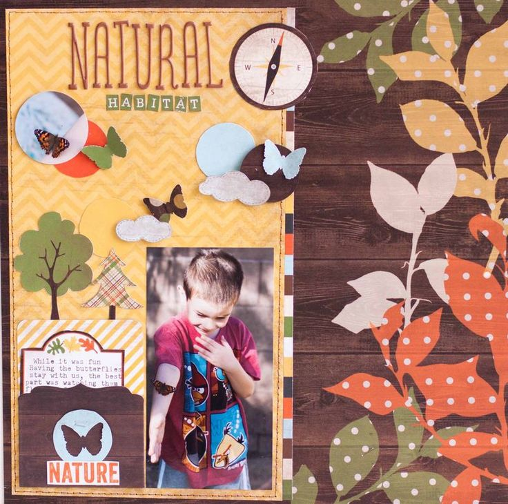 Rk natural habitat: Natural Habitats, Habitats Simple, Camps Layout, Stories Scrapbook, Rk Natural, Scrapbook Layout, Natural Girlz, National Scrapbook, Simple Stories