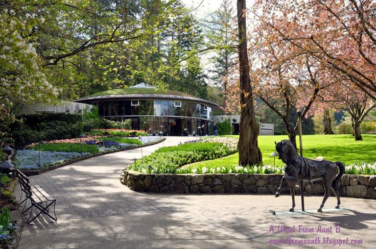 A Word From Aunt B: Springtime at Butchart Gardens.  #spring #explorevictoria #flowers #butchartblooms #butchartgardens  http://www.butchartgardens.com/
