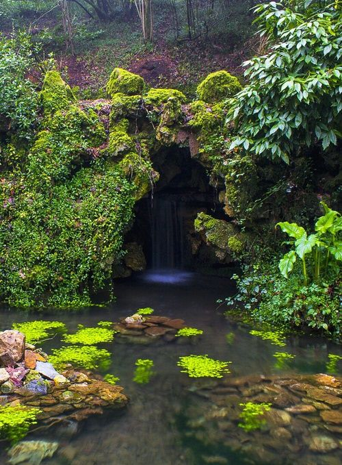 forest, water, and mythical image