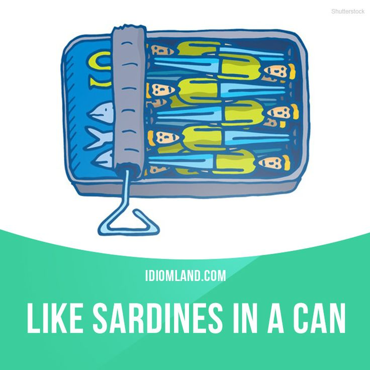 """""""Like sardines in a can"""" means """"a large number of people in a small…"""