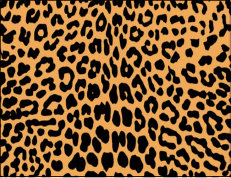 Leopard Print Birthday Edible Frosting Sheet Cupcake Topper  Decoration
