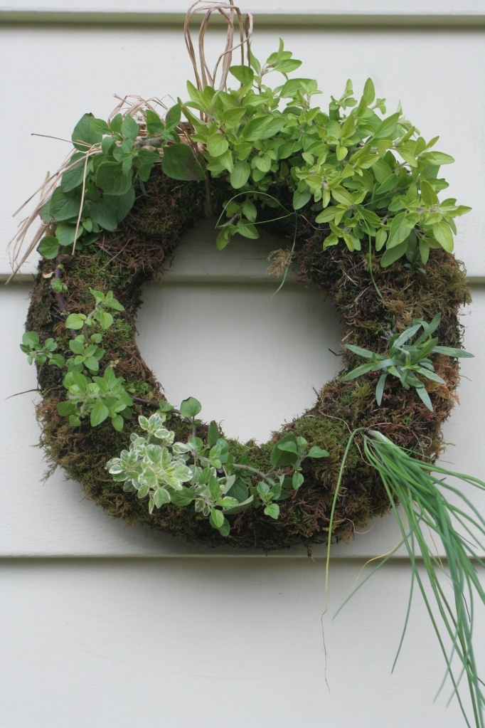 Live herb wreath! reckon I could make one, just have to figure out how to make the wreath!