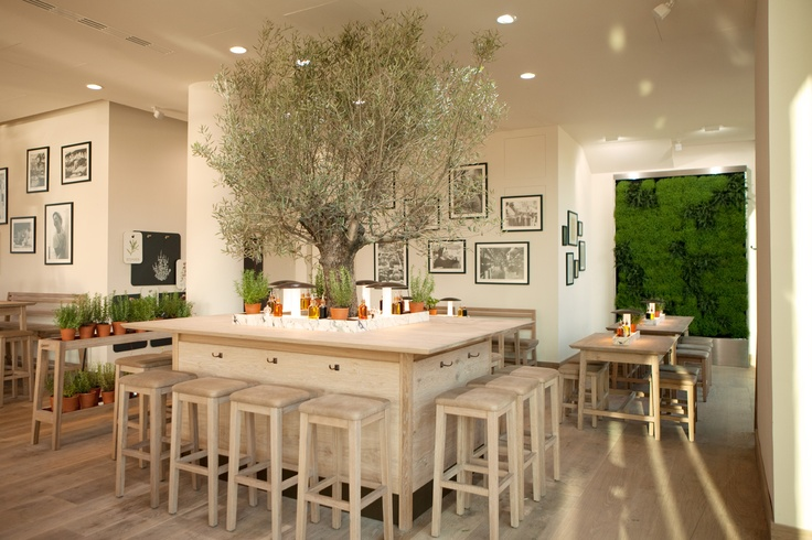Vapiao :  The new design - We love our olive tree