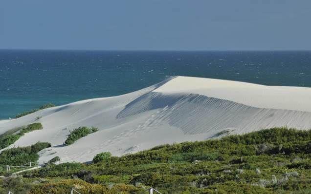 Dunes in the wind