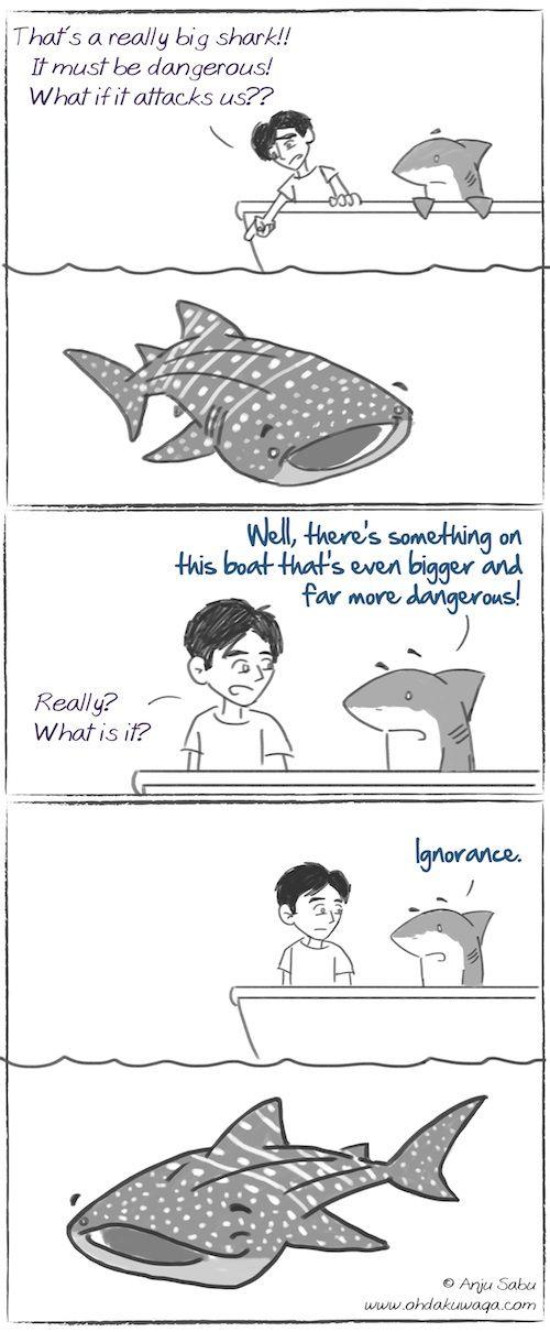 Oh, Dakuwaqa! - The Shark comics and cartoons: International Whale Shark Day!