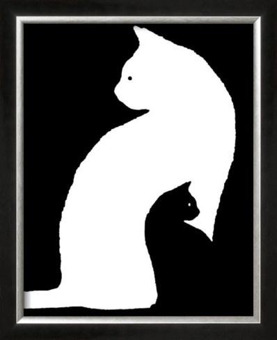 Big White Cat, Small Black Cat