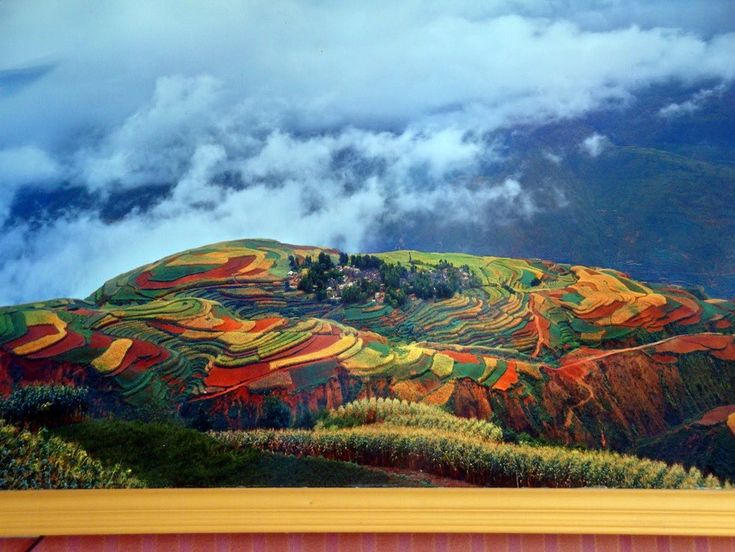 Growing Flowers in China..just gorgeous: God Beautiful, Idea, Favorite Places, Amazing Natural, Color, Beautiful Places, Beautiful World, Rice Fields, Growing Flower
