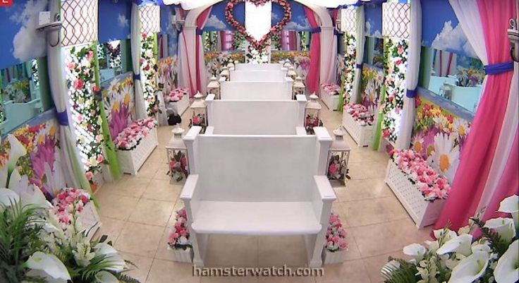 BBCAN4 Have Not Room