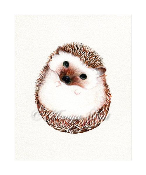Hedgehog art print watercolor woodland animal illustration modern realism wall decor