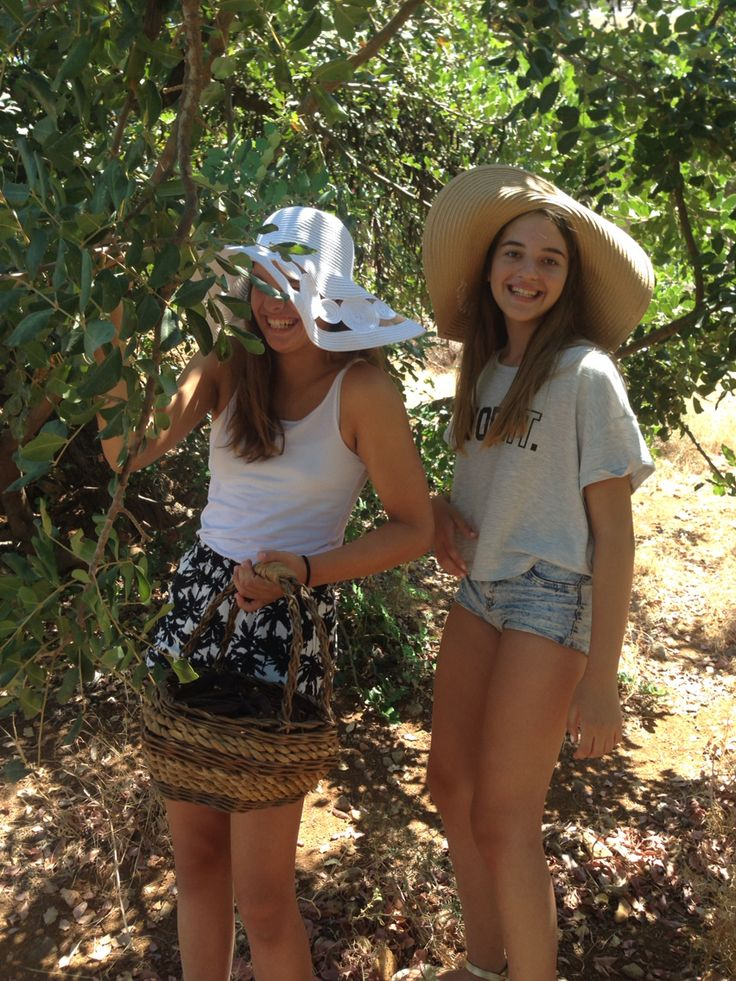 Despina & Despina in pure_philosophy's carob farm in Rethimnon Crete
