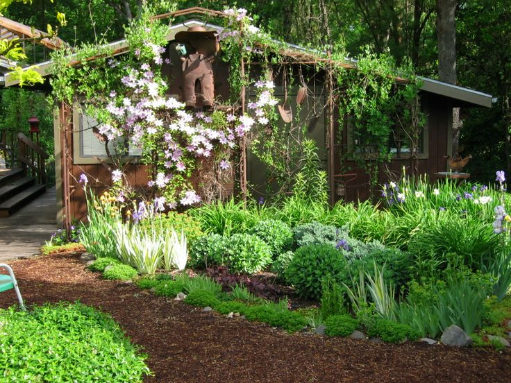 35 best Parron images on Pinterest   Home, Gardening and Clematis - trellis designs for gardens