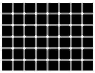 Gezichtsbedrog - zwart of wit?