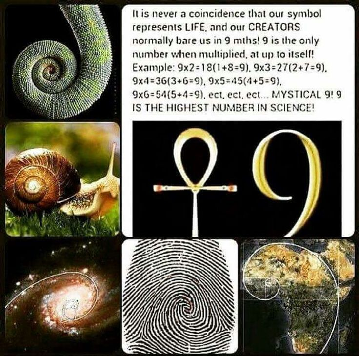 The highest number in science. 9 Wow! Interesting, I think I've seen some of this before  Number of Creator