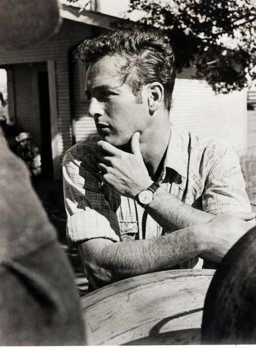 Afternoon Eye Candy: Paul Newman Photo Gallery : The Berry