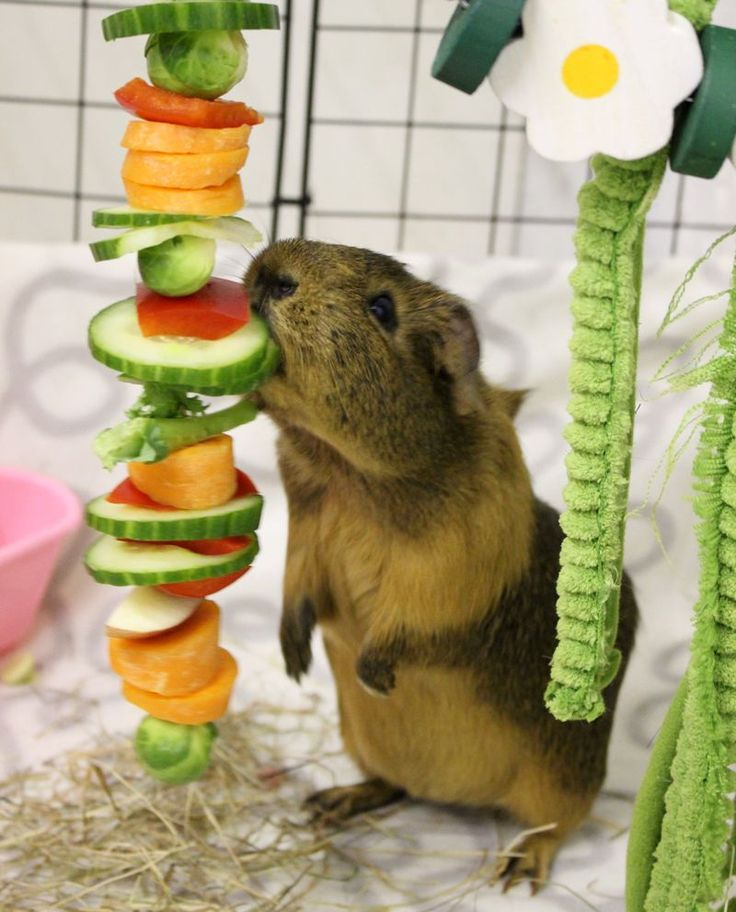 Getting his fruit and veg intake