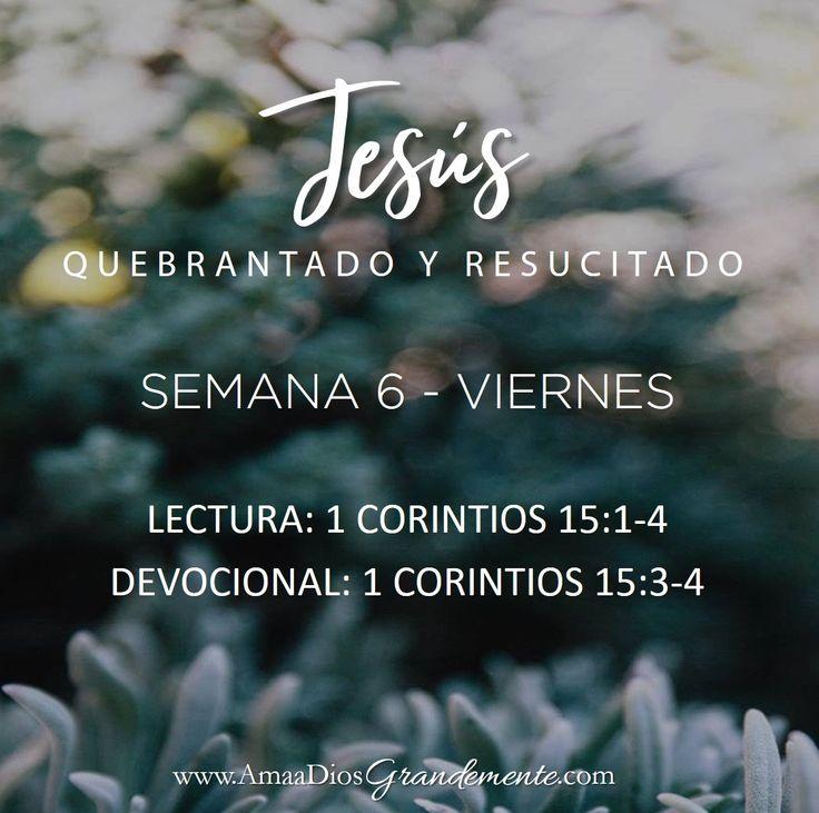 Lectura Viernes Semana 6 #Quebrantadayredimida #AmaaDiosGrandemente #LGGenespanol #LGG #estudiosbiblicosenlinea #Devocionalparamujeres # Biblia #Dios #Quebranto