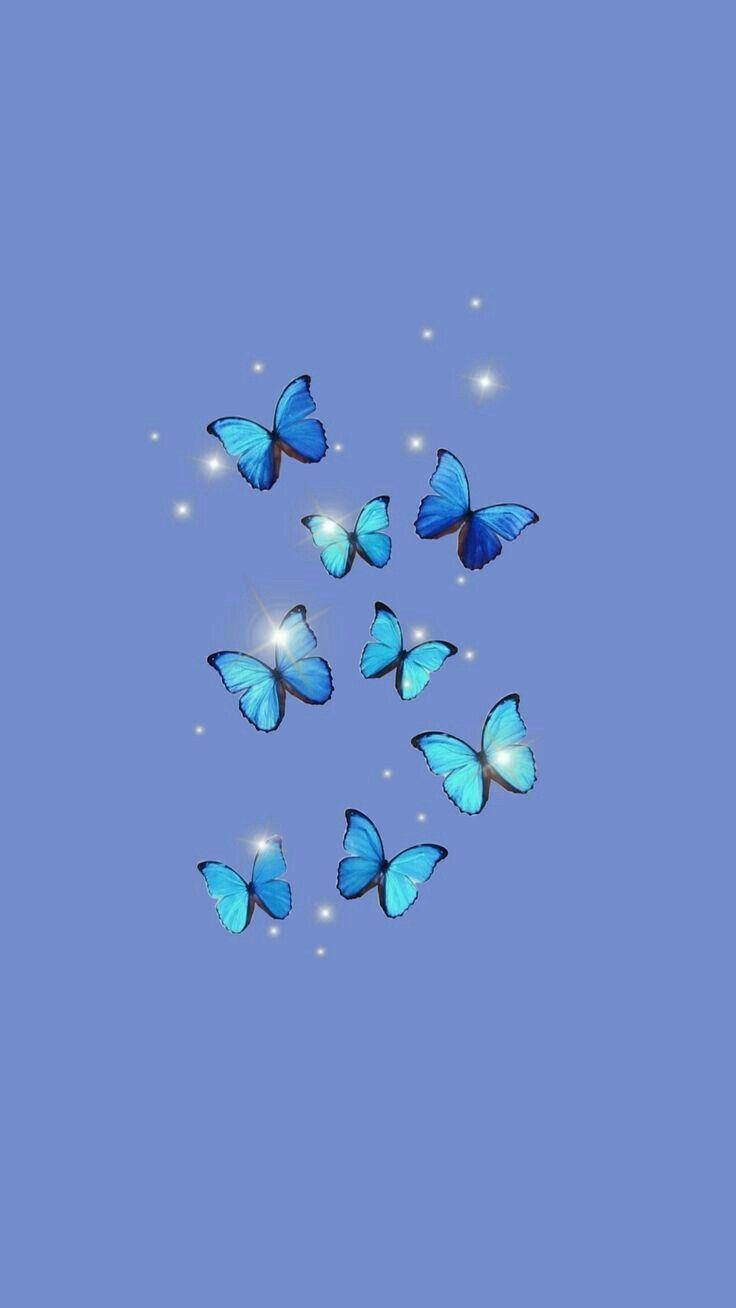 Wallpaper Aesthetic De Borboleta Butterfly Wallpaper Iphone Blue Butterfly Wallpaper Wallpaper Iphone Cute