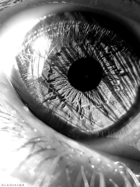 Eye / Black and White Photography