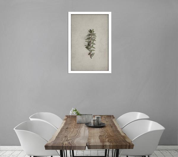 Single Large Fynbos print - One 60x90cm print (Monochrome)