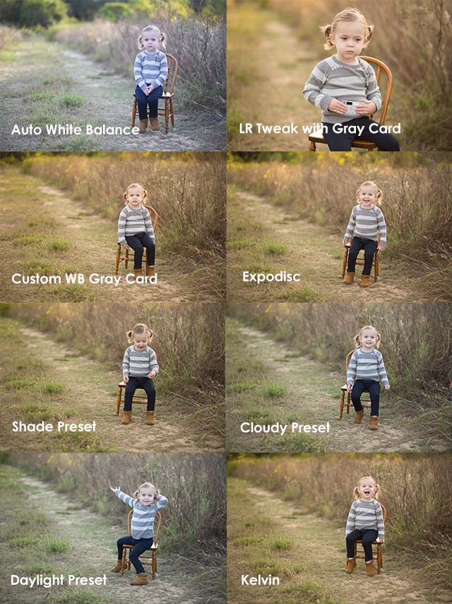 White balance: comparing the choices -by Bethney Backhaus / Posted 01.15.2014 -Oh white balance. Why are there so many different ...