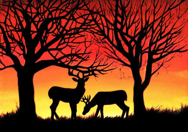 ". ""Grazing Deer at Sunset"", acrylic painting captures a common sight amongst residents of northern BC, as the deer come out to feed as the sun begins to set. We often enjoy bright, colourful sunsets which create brilliant silhouettes of deer and the trees."