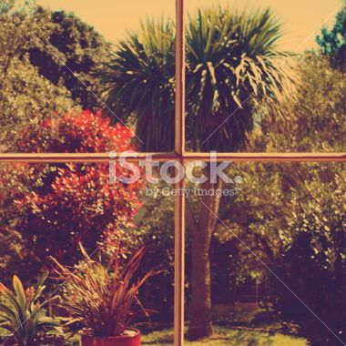 Old Film Style of View out of New Zealand Window Royalty Free Stock Photo