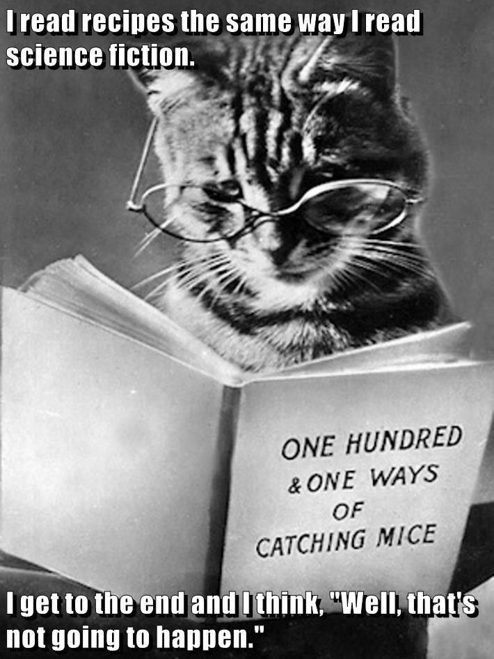 Top 20 Memes Of The Week Cheezburger Users Edition 51 Cats Cat Reading Crazy Cats
