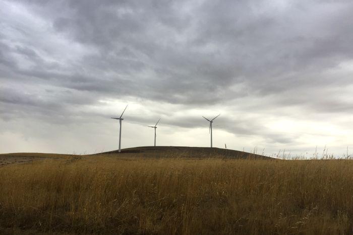 Wind turbines in Waubra, Victoria 2