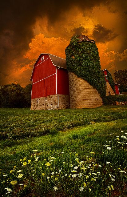 Wonderful, By Phil KochBeautiful Barns, Stormy Sky, The Farms, Farms Life, Country Life, Phil Koch, Red Barns, Photography, Old Barns