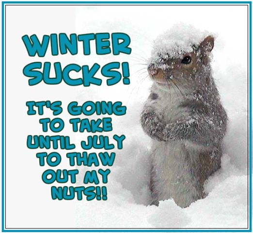 Friday Funny Quotes Winter Humor: Healthy Life Lessons