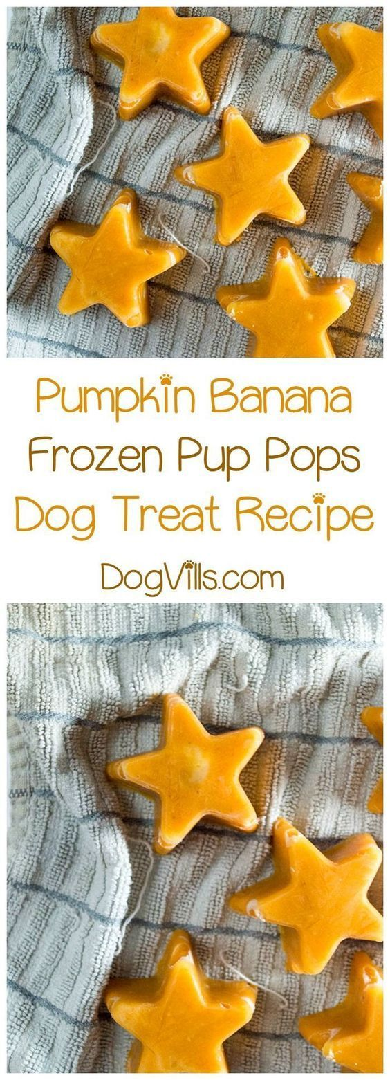Cool Fido down on a hot summer day with a delicious frozen pumpkin banana hypoallergenic dog treat recipe! Whip it up in minutes!