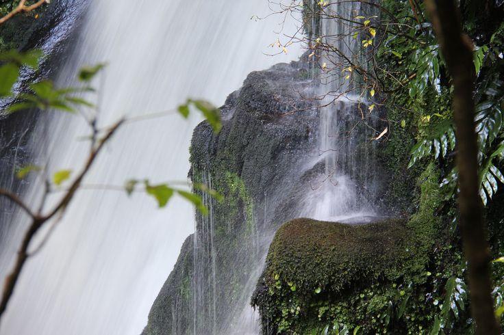 McLeans Falls, Caitlins