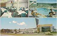 Arva Motor Hotel Arlington Va Postcard1960s