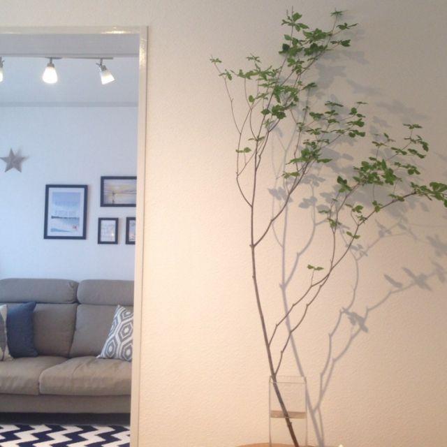 西海岸インテリアにしたい‼ IKEA額縁のインテリア実例   RoomClip (ルームクリップ)