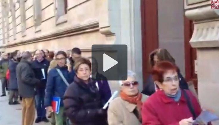 Vídeo: Espectaculars cues per les #autoinculpacions9n
