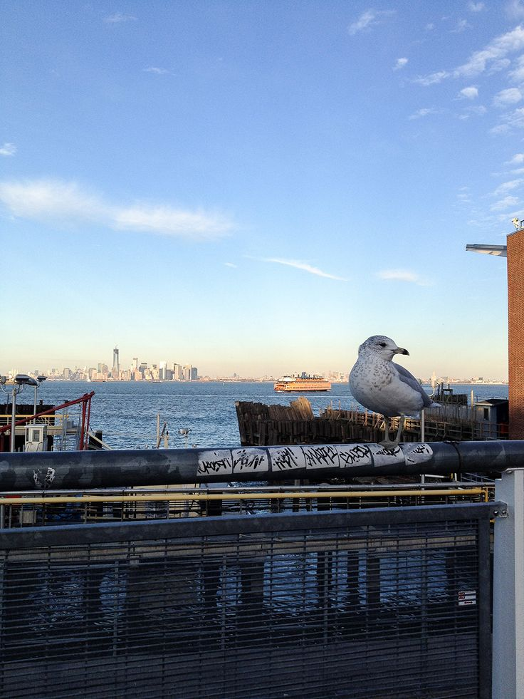 Manhattan vista de Staten Island. Mais informações no blog :)
