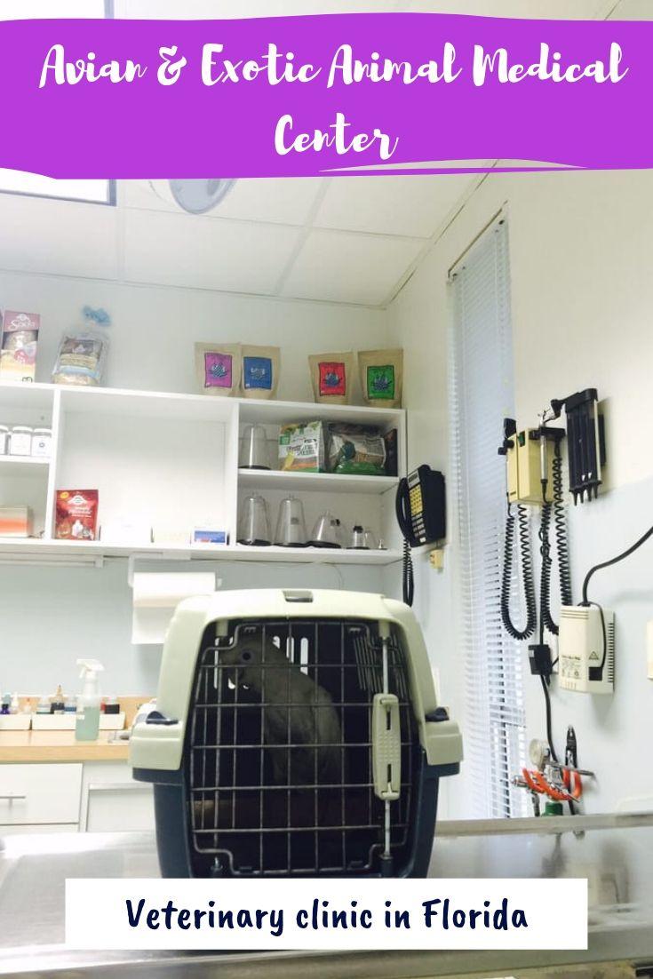Pin On Veterinary Clinics In Usa Pet Clinics
