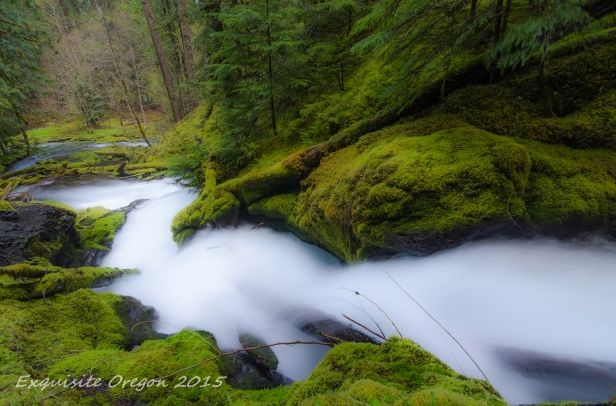lower-downing-creek-falls-4-11-15.jpg