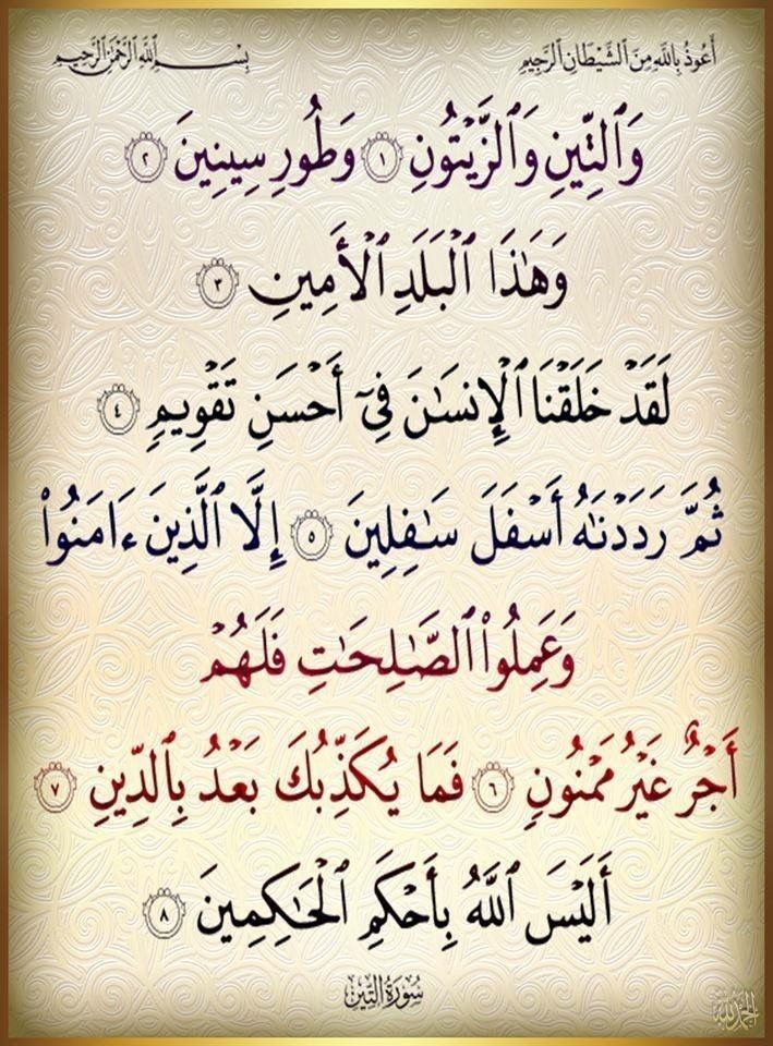 Pin By I Am On January 2019 Quran Book Islamic Phrases Quran Verses