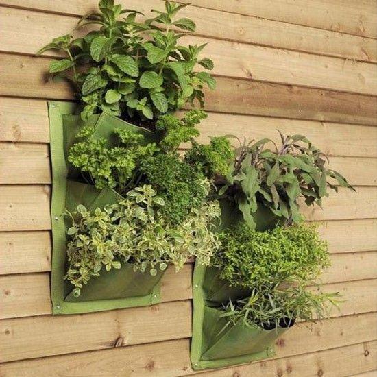 Leaf Verti-Plant