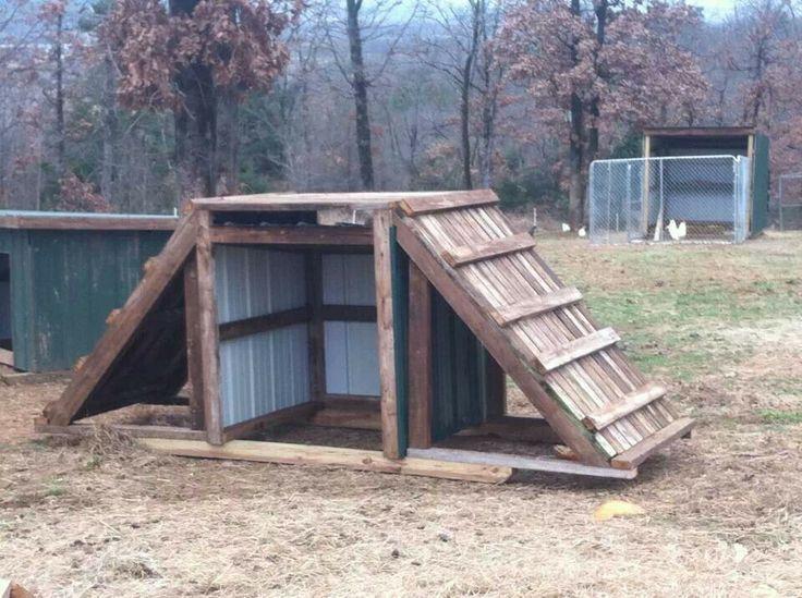 Goat shelter - photo#34