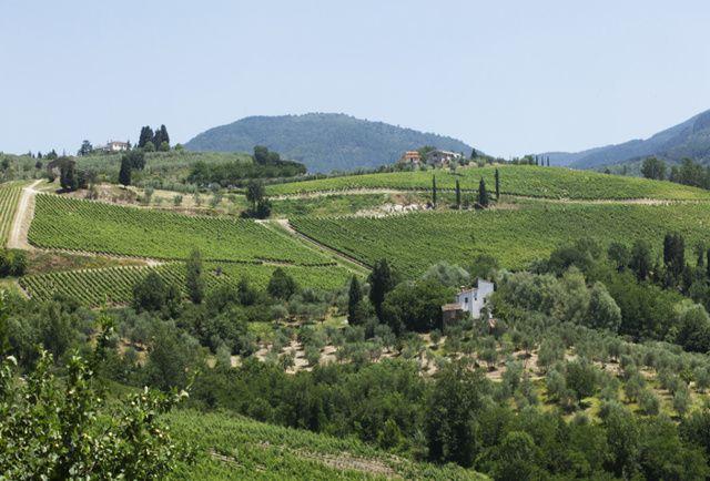 La strada dei vini Chianti Rufina e Pomino: Territorio