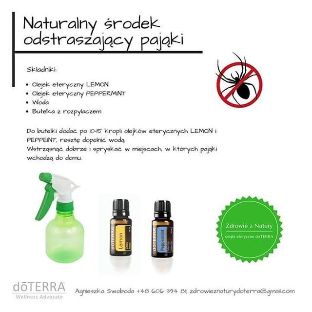 Naturalny środek odstraszajacy pająki. #doterraoils #doterraPolska #peppermint #lemon #olejkieteryczne #napająki