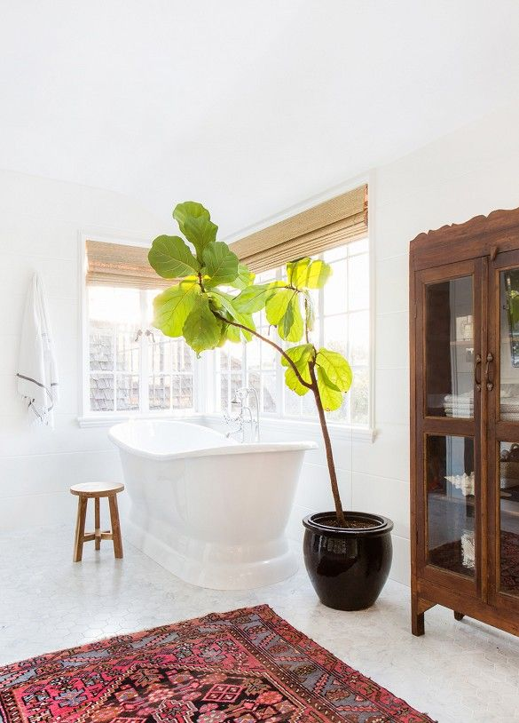 A calming and serene white bedroom with wood cabinet and fiddle leaf